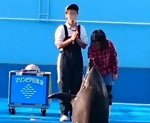 マリンピア日本海イルカショーイルカと握手