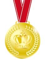 272511金メダル